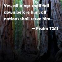 psalm 72_11